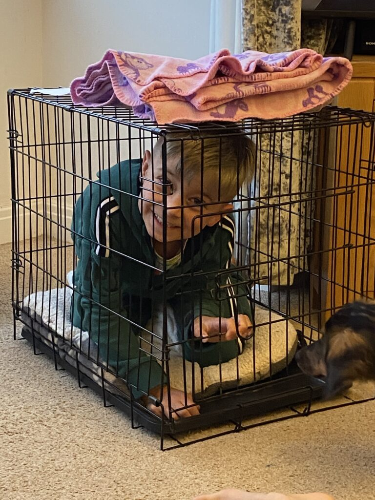 child in dog crate funny